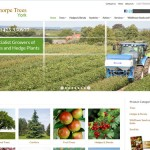 Thorpe Trees Ecommerce Website Design Hull, Yorkshire by Weborchard
