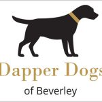 Logo Design and Branding Dapper Dogs Beverley by Weborchard