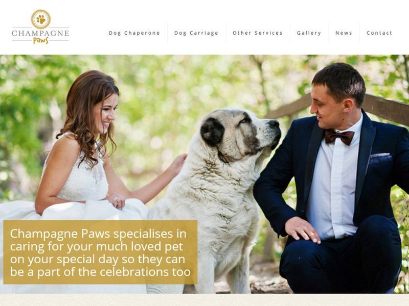 Website Design Beverley by Weborchard for Champagne Paws